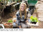 Купить «happy female gardener holding sapling», фото № 23137193, снято 11 мая 2016 г. (c) Wavebreak Media / Фотобанк Лори