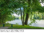 Купить «Озеро в старом парке. Украина», фото № 23156113, снято 11 июня 2011 г. (c) Николай Голицынский / Фотобанк Лори