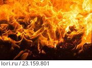 Огонь, горящий в печи. Стоковое фото, фотограф Синицын Юрий Альбертович / Фотобанк Лори
