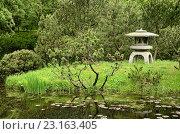 Купить «Японский садик в Московском ботаническом саду», фото № 23163405, снято 23 мая 2015 г. (c) Ирина Носова / Фотобанк Лори