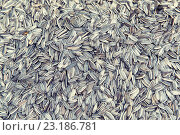 Купить «sunflower seeds texture», фото № 23186781, снято 7 февраля 2015 г. (c) Syda Productions / Фотобанк Лори