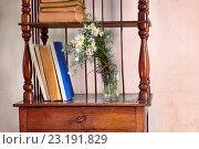 Купить «Старые книги на старой этажерке. Этажерка-ретро», фото № 23191829, снято 26 июня 2016 г. (c) Валерий Тырин / Фотобанк Лори