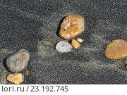 Купить «Песок в прибойной полосе озера Байкал», фото № 23192745, снято 28 июня 2016 г. (c) Иванова Анастасия / Фотобанк Лори