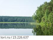 Михайловский пруд. Стоковое фото, фотограф Андрей Казаков / Фотобанк Лори