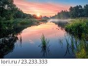 Купить «Красивое лесное озеро», фото № 23233333, снято 3 июля 2016 г. (c) Baturina Yuliya / Фотобанк Лори