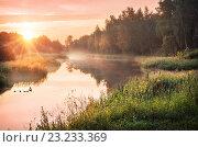 Купить «Утро лета», фото № 23233369, снято 3 июля 2016 г. (c) Baturina Yuliya / Фотобанк Лори