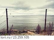 Купить «barb wire fence over gray sky and sea», фото № 23259105, снято 30 сентября 2015 г. (c) Syda Productions / Фотобанк Лори