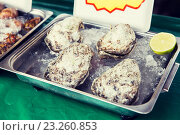Купить «oysters or seafood on ice at asian street market», фото № 23260853, снято 7 февраля 2015 г. (c) Syda Productions / Фотобанк Лори