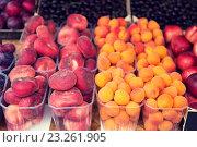 Купить «close up of peaches and apricots at street market», фото № 23261905, снято 27 июля 2015 г. (c) Syda Productions / Фотобанк Лори