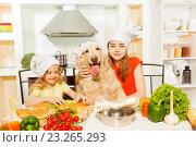 Купить «Девочки с поварских колпаках и с собакой готовят еду на кухне», фото № 23265293, снято 16 апреля 2016 г. (c) Сергей Новиков / Фотобанк Лори