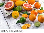 Купить «Fresh citrus fruits on wooden table», фото № 23286581, снято 18 мая 2016 г. (c) Tatjana Baibakova / Фотобанк Лори