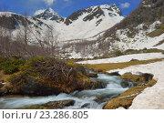 Купить «Весенний ручей в Кавказских горах», фото № 23286805, снято 21 мая 2016 г. (c) александр жарников / Фотобанк Лори
