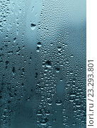 Купить «Капли воды на стекле», фото № 23293801, снято 31 октября 2007 г. (c) Dina / Фотобанк Лори