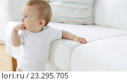 little baby standing and holding to sofa at home 24. Стоковое видео, видеограф Syda Productions / Фотобанк Лори