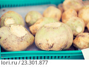 close up of swede or turnip at street market. Стоковое фото, фотограф Syda Productions / Фотобанк Лори