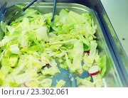close up of romaine lettuce salad in container. Стоковое фото, фотограф Syda Productions / Фотобанк Лори