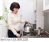 Купить «Женщина хлопочет на кухне», фото № 23309225, снято 11 февраля 2015 г. (c) Дарья Филимонова / Фотобанк Лори