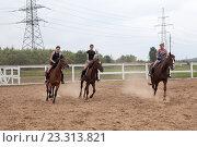 Три женщины катаются на лошадях внутри загона на ферме (2016 год). Редакционное фото, фотограф Кекяляйнен Андрей / Фотобанк Лори