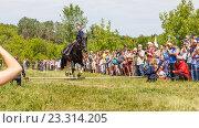 Купить «Девочка казачка скачет на лошади», фото № 23314205, снято 18 июня 2016 г. (c) Акиньшин Владимир / Фотобанк Лори