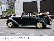 Купить «Бентли - свадебный ретро-автомобиль», фото № 23315653, снято 16 июля 2016 г. (c) Марина Шатерова / Фотобанк Лори