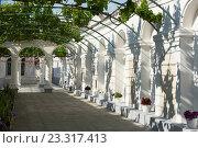Купить «Караимские кенассы. Виноградный дворик. Евпатория, Крым», эксклюзивное фото № 23317413, снято 27 мая 2016 г. (c) Александр Щепин / Фотобанк Лори