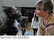 Купить «Danish woman posing beside the corpus reconstruction of Lucy, female of the hominin species Australopithecus afarensis, living 3, 2 million years ago in...», фото № 23323021, снято 10 июня 2016 г. (c) age Fotostock / Фотобанк Лори
