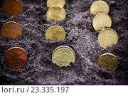 Купить «Монеты на чёрной почве», фото № 23335197, снято 5 июня 2016 г. (c) Elena Molodavkina / Фотобанк Лори