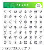 Набор иконок-растений. Стоковая иллюстрация, иллюстратор Viachaslau Vaitsenok / Фотобанк Лори