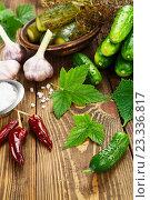Купить «Свежие и соленые огурцы и ингредиенты для засолки на столе», фото № 23336817, снято 1 августа 2016 г. (c) Надежда Мишкова / Фотобанк Лори