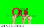Купить «Woman hand holding letters Q, U and I», видеоролик № 23346093, снято 11 июля 2020 г. (c) Wavebreak Media / Фотобанк Лори