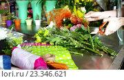 Купить «Female florist trimming flower stem in flower shop», видеоролик № 23346621, снято 22 ноября 2017 г. (c) Wavebreak Media / Фотобанк Лори