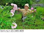 Купить «Пожилая женщина садовод сидит рядом с розовыми пионами», фото № 23349409, снято 27 июня 2016 г. (c) Максим Мицун / Фотобанк Лори