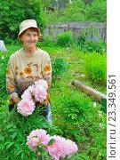Купить «Пожилая женщина садовод стоит и улыбается рядом с розовыми пионами», фото № 23349561, снято 27 июня 2016 г. (c) Максим Мицун / Фотобанк Лори