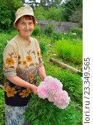 Купить «Пожилая женщина садовод стоит и улыбается рядом с розовыми пионами», фото № 23349565, снято 27 июня 2016 г. (c) Максим Мицун / Фотобанк Лори
