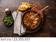 Купить «Суп Харчо», фото № 23355937, снято 31 июля 2016 г. (c) Лисовская Наталья / Фотобанк Лори