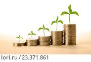 Купить «Стопки монет с зелеными растениями на светлом фоне», фото № 23371861, снято 4 августа 2016 г. (c) Александр Калугин / Фотобанк Лори