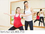 Купить «pregnant woman with personal trainer doing fitness exercise», фото № 23383713, снято 3 ноября 2015 г. (c) Дмитрий Калиновский / Фотобанк Лори