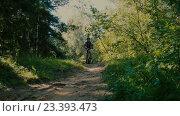 Купить «Велосипедист едет через лес», видеоролик № 23393473, снято 12 августа 2016 г. (c) Игорь Усачев / Фотобанк Лори