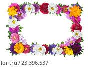 Купить «Рамка из цветов на белом фоне», фото № 23396537, снято 4 сентября 2010 г. (c) Литова Наталья / Фотобанк Лори