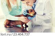 Купить «woman with dog and doctor at vet clinic», фото № 23404737, снято 19 июля 2015 г. (c) Syda Productions / Фотобанк Лори
