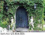 Купить «Дверь окутанная зеленым плющом», фото № 23404865, снято 9 сентября 2015 г. (c) Татьяна Кахилл / Фотобанк Лори