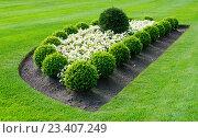 Купить «Ландшафтный дизайн», фото № 23407249, снято 9 сентября 2015 г. (c) Татьяна Кахилл / Фотобанк Лори