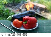 Купить «Болгарский перец, помидор, баклажан.  Три овоща на тарелке на фоне костра», эксклюзивное фото № 23408653, снято 25 июня 2016 г. (c) Щеголева Ольга / Фотобанк Лори