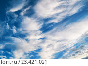 Купить «Небесный пейзаж - яркое синее облачное небо с красивыми облаками на закате», фото № 23421021, снято 16 августа 2016 г. (c) Зезелина Марина / Фотобанк Лори