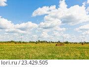 Купить «Сельский пейзаж. Рулоны сена на скошенном поле», эксклюзивное фото № 23429505, снято 10 августа 2016 г. (c) Макаров Алексей / Фотобанк Лори