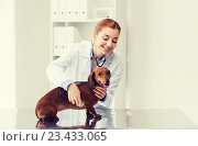 Купить «doctor with stethoscope and dog at vet clinic», фото № 23433065, снято 19 июля 2015 г. (c) Syda Productions / Фотобанк Лори