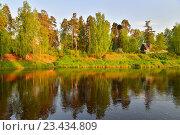 Купить «Берег реки Оредеж с деревьями солнечным днём», фото № 23434809, снято 22 мая 2016 г. (c) Максим Мицун / Фотобанк Лори