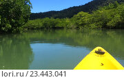 Купить «Прогулка по реке в джунглях, каякинг», видеоролик № 23443041, снято 29 августа 2016 г. (c) Popov Roman / Фотобанк Лори