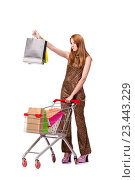 Купить «Woman with shopping cart and bags isolated on white», фото № 23443229, снято 6 июня 2016 г. (c) Elnur / Фотобанк Лори