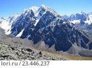 Алтай, горные вершины Северо-Чуйского хребта в ясную погоду. Стоковое фото, фотограф Овчинникова Ирина / Фотобанк Лори